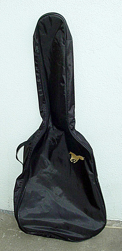 Kima Guitar Gig Bag From 2005