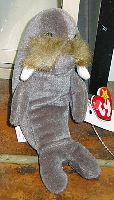 Jolly the Walrus Beanie Baby 1997-1998 (Image1)