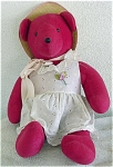 Click here to enlarge image and see more about item NAB0001: North American Bear Co. Cranberry Bear 1979
