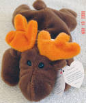 Ty, Inc. Chocolate the moose beanie baby plush, No. 4015, is from 1994-1998. Chocolate is brown with orange antlers. Chocolate's birthday is  April 27, 1993. He was introduced on January 8, 1994 and retired December 31, 1998. He is mint with tag and approximately 7 to 8 inches in size. His tag's verse is: 'Licorice and gum and peppermint candy, This moose always has these handy, There is one thing more he likes to eat, Can you guess his favorite sweet?' Retired beanie baby is mint condition with tag and has not been exposed to smoke or unpleasant odors.