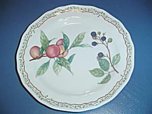 Noritake Gourmet Harvest Dinner Plates (Image1)