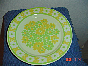 Franciscan Picnic Dinner Plates