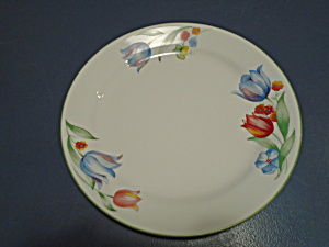 Corelle Fresh Cut Dinner Plates
