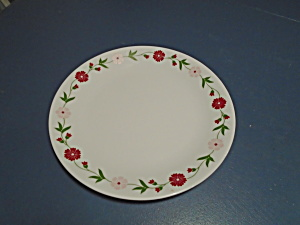 Corelle Spring Pink Dinner Plates & Corelle Simply Spring Dinner Plates