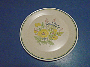 Lenox Temperware Summer Spice Dinner Plates