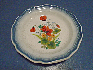 Mikasa Country Club Scarlet Salad Plates