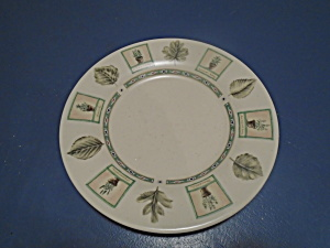 Pfaltzgraff Naturewood Rare 9 In. Lunch Plates - Look