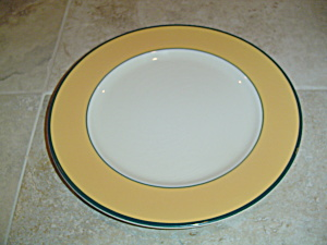 Pagnossin Spa Orange Dinner Plate Green Verge