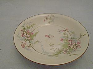 haviland theodore antique china antique dinnerware vintage china vintage dinnerware. Black Bedroom Furniture Sets. Home Design Ideas