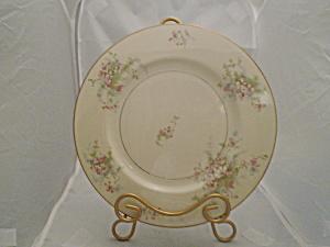 Theodore Haviland New York Apple Dinner Plates (Image1)