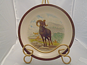 National Wildlife Federation Ram Salad Plate