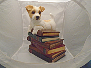 Big Sky Canine Cookie Jar Dog Sitting On Pile Of Books