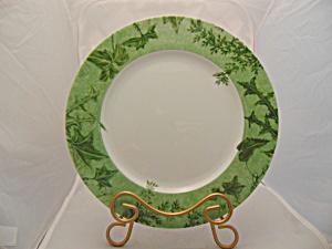 Mikasa Parkville Jade Dinner Plate(s) (Image1)