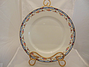 Thuny Czechoslovakia Carlton Dinner Plates Set Of 8 Beautiful