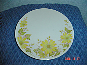 Noritake Shasta Bread And Butter Plates