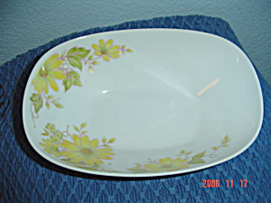 Noritake Shasta Oval Serving Bowl