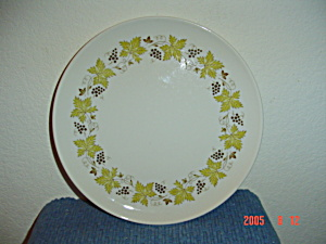 Syracuse China Carefree Vintage Dinner Plates