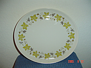 Syracuse China Carefree Vintage Oval Platter