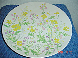 Noritake Flower Power Dinner Plates