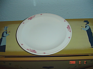 New Pyroceram Pink Vine Design Lunch Plates