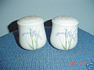 Corelle Shadow Iris Salt And Pepper Shakers