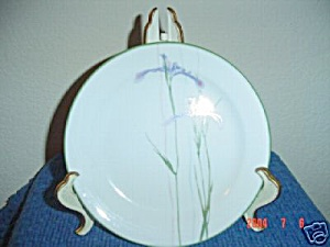 Corelle Shadow Iris Salad Plates Edge Trim