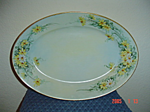 Hutschenreuther-selb Daisy Design Oval Platter