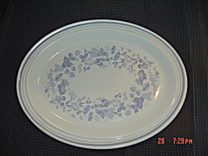 Royal Doulton Shadow Play Oval Platter