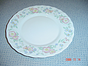 Arcopal Champetre Salad Plates (Image1)