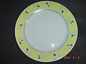 Royal Doulton Blueberry Dinner Plates