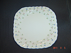 Johnson Bros. Melody Square Salad Plates
