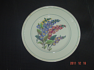 Wedgwood Edme Garden Club Lunch Plates