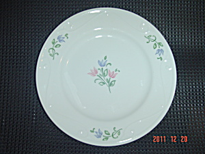 Princess House Veranda Floral Accents Salad Plates