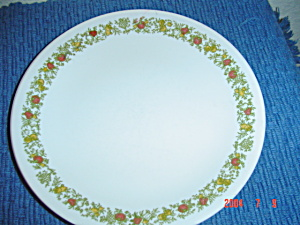 Corelle Spice Of Life Lunch Plates