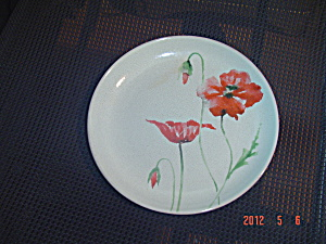 222 Fifth Pts Amapola Salad Plates