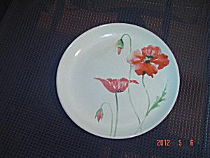 222 Fifth PTS Amapola Salad Plates (Image1)