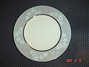 Castleton Lace Dinner Plates (Image1)
