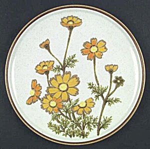 Mikasa Southern Sun Dinner Plates Natural Beauty