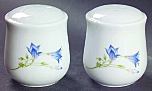 Corelle Cooridinates Blue Dusk Salt And Pepper Shakers