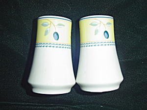 Royal Doulton Blueberry Salt And Pepper Shakers