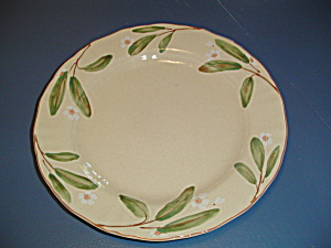 Mikasa Country Classics Petite Bloom Dinner Plates