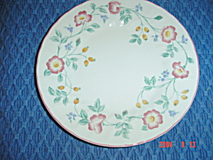 Churchill Briar Rose Dinner Plates