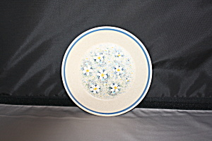 Lenox Temperware Dewdrops Bread And Butter Plates