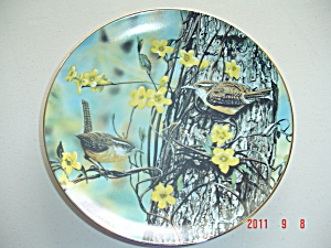 O'driscoll Carolina Wrens Favorite American Songbirds Collector Plate