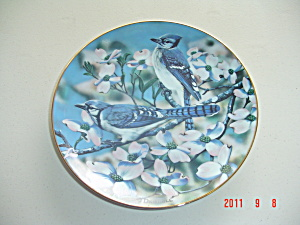 O'driscoll Blue Jays Spring American Songbirds Collector Plate