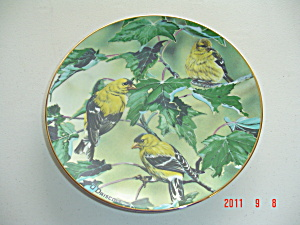 O'driscoll Goldfinches Favorite American Songbirds Collector Plate