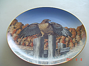 Hamilton Realm Of Red Tail Majesty Of Flight Collector Plate