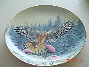 Hamilton The Vantage Point Majesty Of Flight Collector Plate