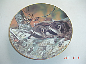 Bradex-george Fascination Our Woodland Friends Collector Plate