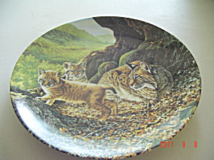 Knowles The Bobcat Great Cats Of Americas Collector Plate